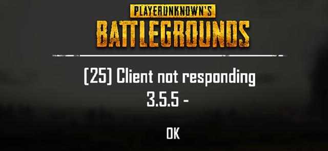 PUBG Client not responding fix